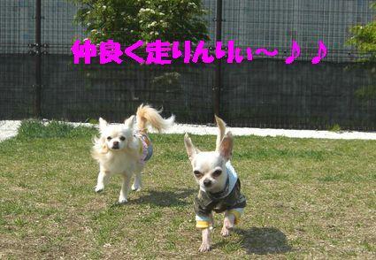 カメラ 69780