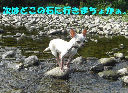 カメラ 0931