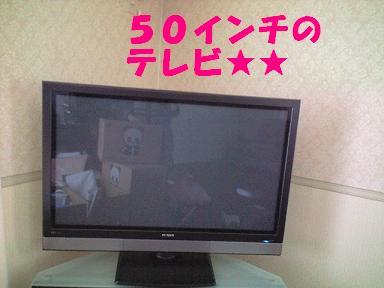CA390747001.jpg