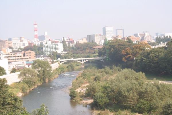 keyaki-001984s.jpg