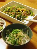 ゴーヤチャンプル&素麺