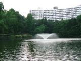 井の頭公園 1
