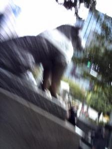 20061025190332.jpg