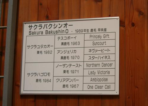 SBakushinO20081108_1.jpg