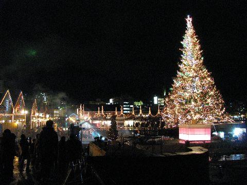 函館の夜景-港