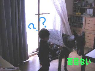 0805169.jpg