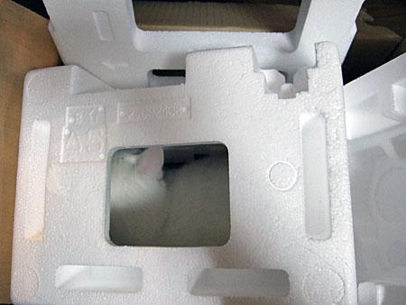 20080810c.jpg