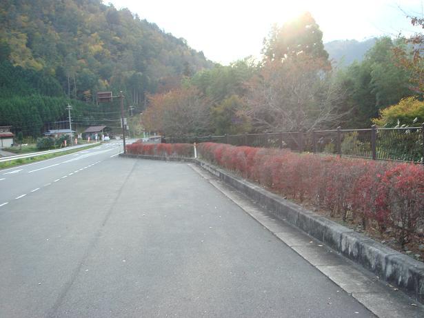 秋ツーリング02