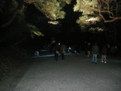 7.光の道