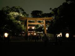 13.御社殿への鳥居