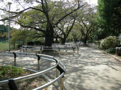 16.千鳥が淵公園