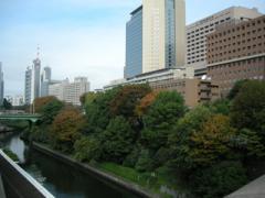 3.東京医科歯科大学