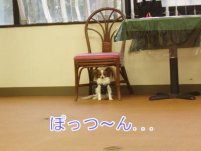 2008-01-12-018.jpg