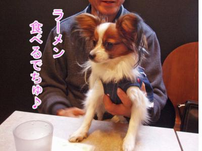 2008-01-12-025.jpg