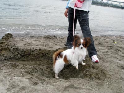 2008-05-05-010.jpg