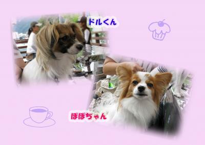 カフェで Ⅱ