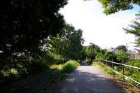 たてもの園_ 道