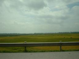 ハノイ近郊の農村