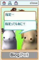 ペットの会話1