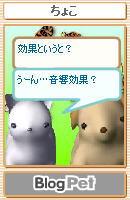 ペットの会話3