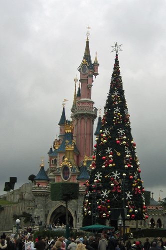 クリスマスツリーもありました