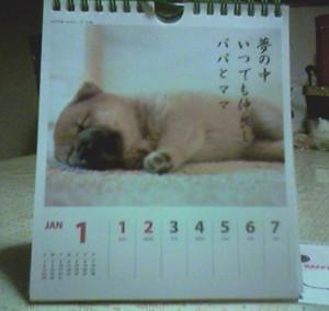 ワンコのカレンダー