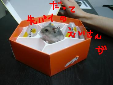 画像2 218-3