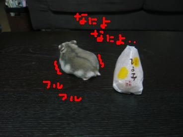 画像2 276-3