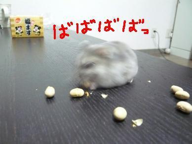 画像4(080124~) 208-4