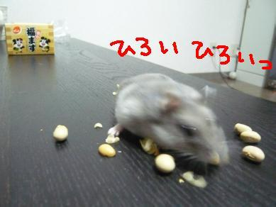 画像4(080124~) 209-5