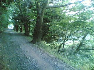 20060627(018).jpg