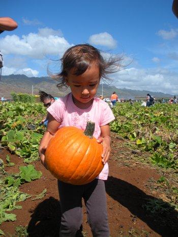 pumpkin-5.jpg