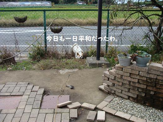008heiwa.jpg