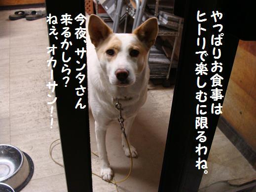 063oyasumi.jpg