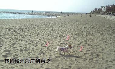 林崎松江海岸到着♪