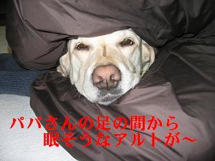 寝てるのに~~起こさんといて~