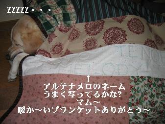 アルト爆睡^^