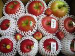 色んな種類のりんごが一杯♪