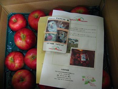 アルテナメロのりんご、最終便♪