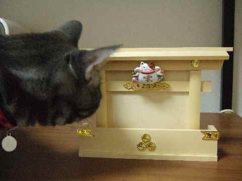 猫舎の神棚2