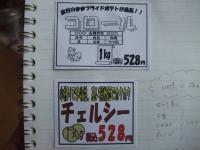 BLOG8121.jpg