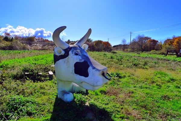 えいちのむらの牛2