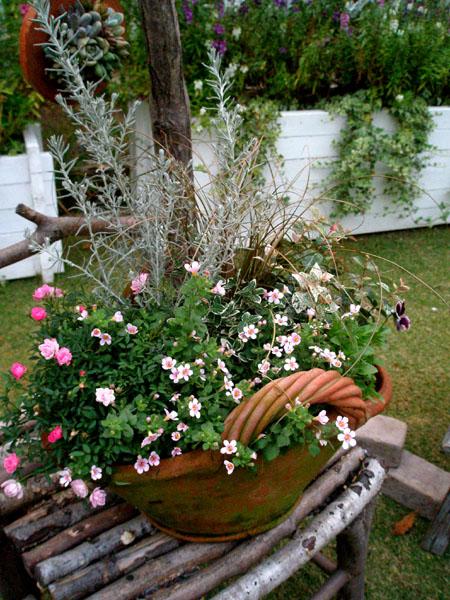 花かごの寄せ植え