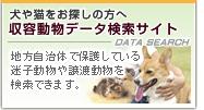 収容動物データ検索サイト