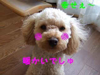 2007_01020023.jpg