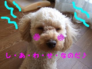 2007_01020025.jpg