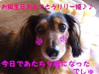 2007_01050008.jpg