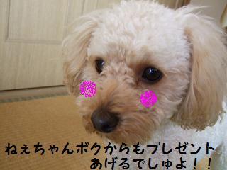 2007_01050009.jpg