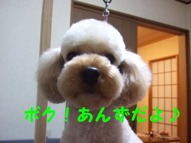 2007_02090004.jpg