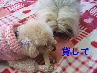 2007_02260007.jpg